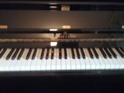 PIANOFORTE VERTICALE su LaPulce.it strumenti musicali,